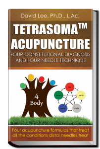 Tetrasoma Acupuncture 3D Book